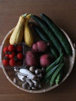 24有機野菜