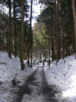26比叡山3