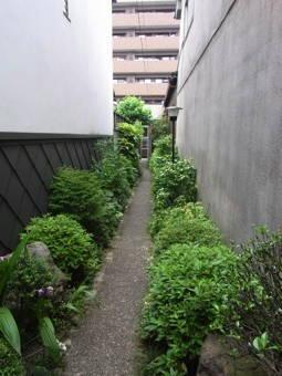 モリタハウス