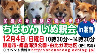 shounan20111204_320x180