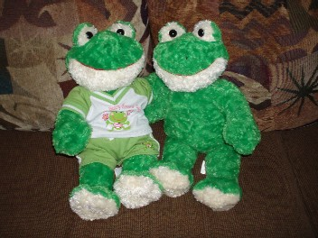 Mie_Frog011206_1.jpg