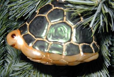 Christmas2005_1.jpg
