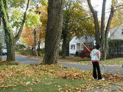 Fall2005_1.jpg