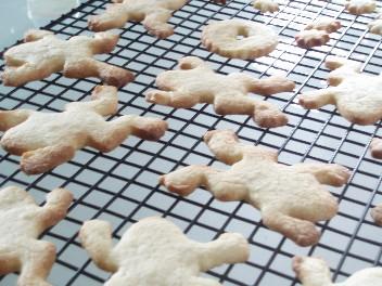1111frogcookies.jpg