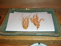 0525shrimp