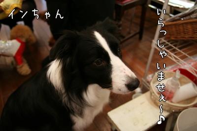 090213_07.jpg