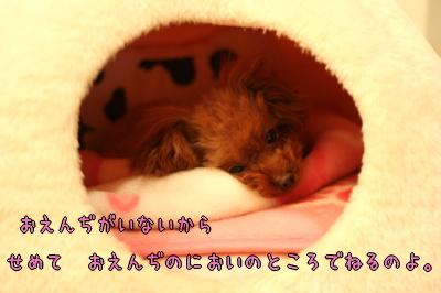 090118_04.jpg