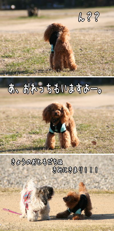060213_4.jpg