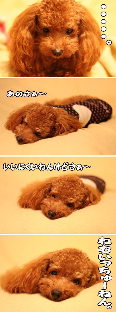 050921_3.jpg