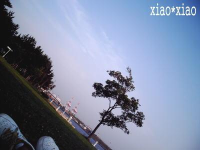 060621_5.jpg