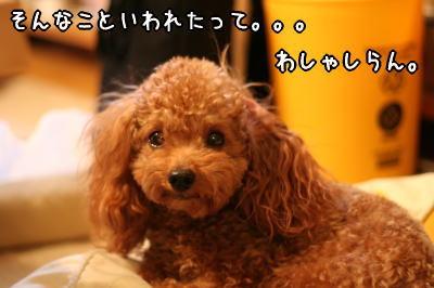 060108_3.jpg