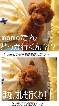 050329_1.jpg