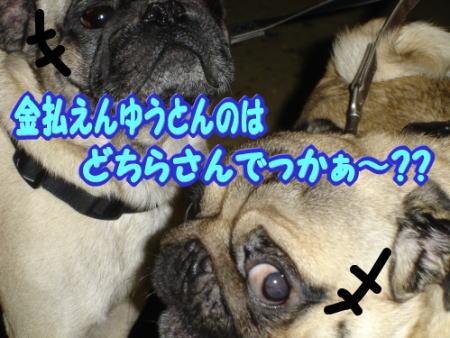 090119_09.jpg