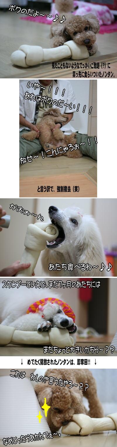 060517_3.jpg