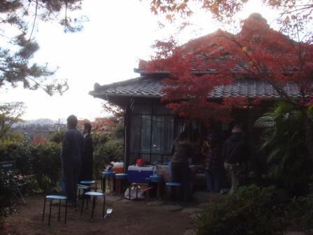 紅葉の児玉茶園。