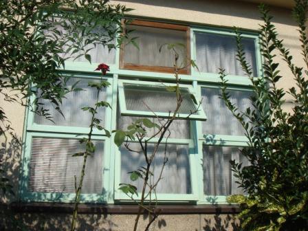 この窓に一目惚れ。