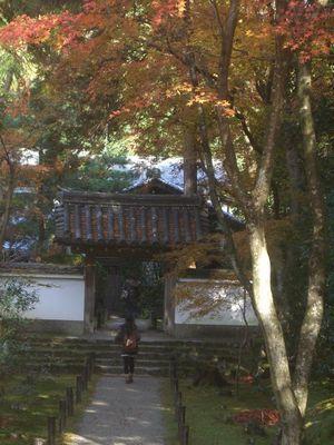 地蔵院 (2)