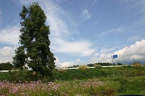 s-IMG_6533.jpg