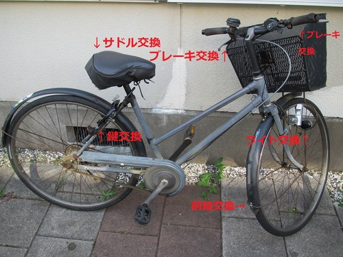 IMG_0294改