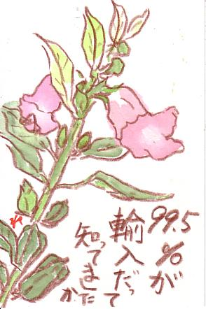スキャン0061