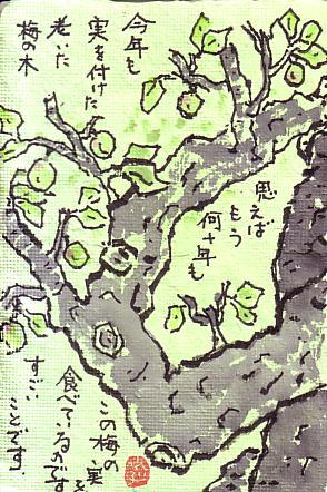 スキャン0022