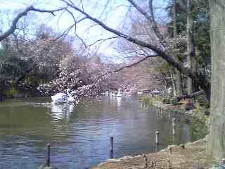 200603253.jpg