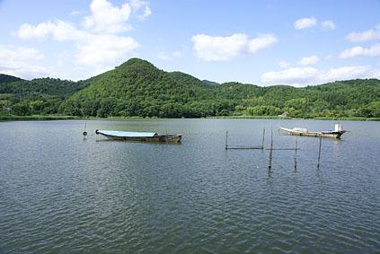 hirosawa705b.jpg