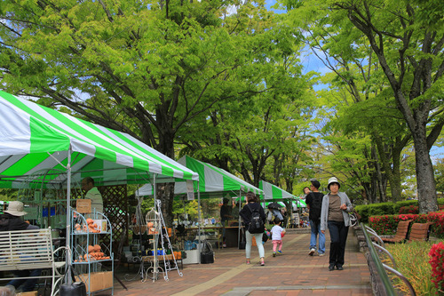 春日井都市緑化植物園4