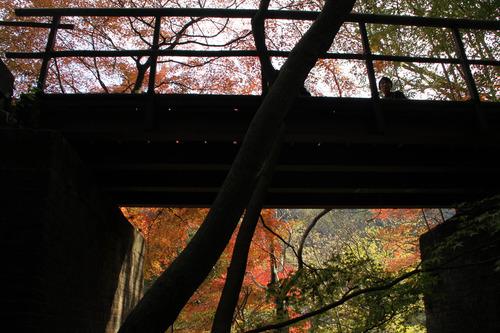 愛岐トンネル群11