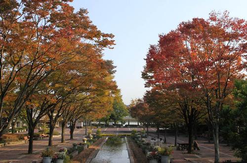 春日井緑化センター1