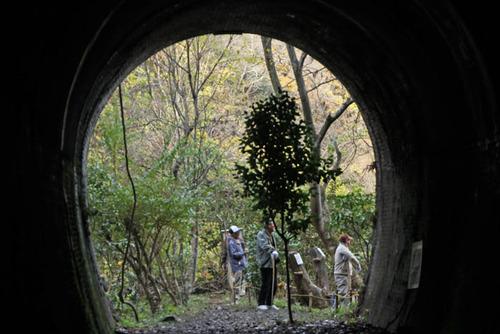愛岐トンネル5
