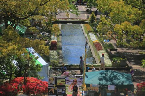 春日井都市緑化植物園8