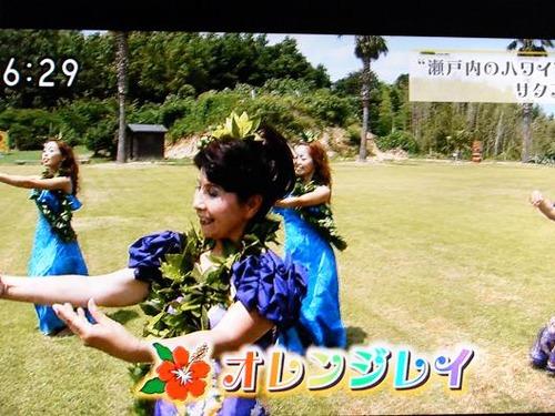 テレビ平成25年7月19日撮影 011