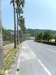 片添ヶ浜 ホテルサンシャインサザンセトさん 028