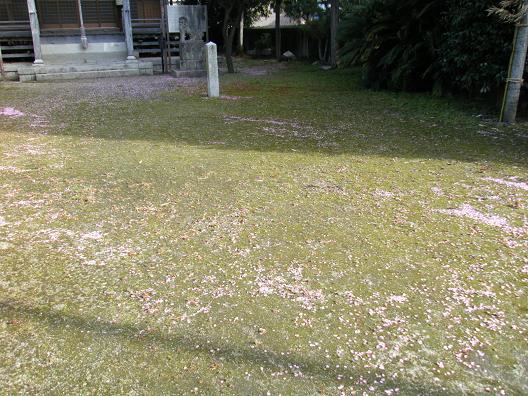 img20100212.jpg
