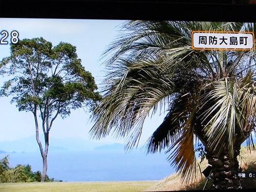 テレビ平成25年7月19日撮影 005