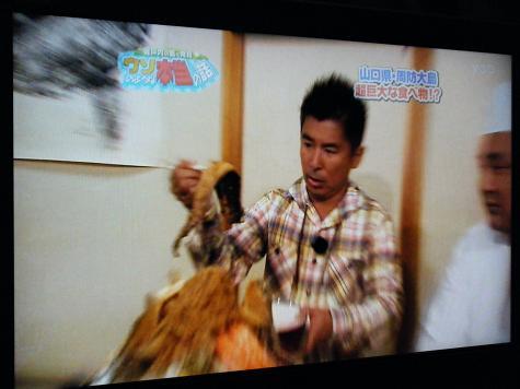 慶テレビ 019