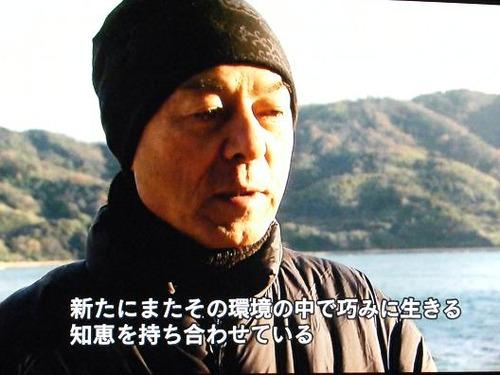 (周防大島ニホンアワサンゴ)撮影平成25年1月25日 060