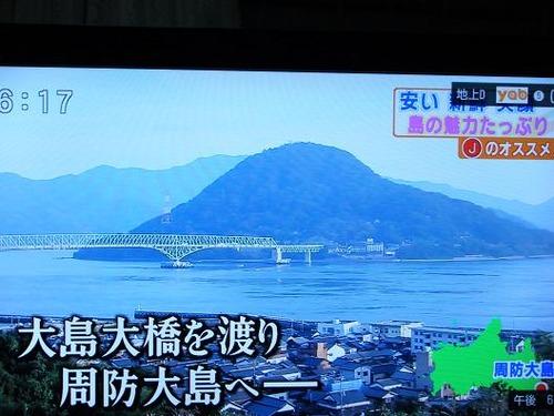 平成23年12月5日撮影 050