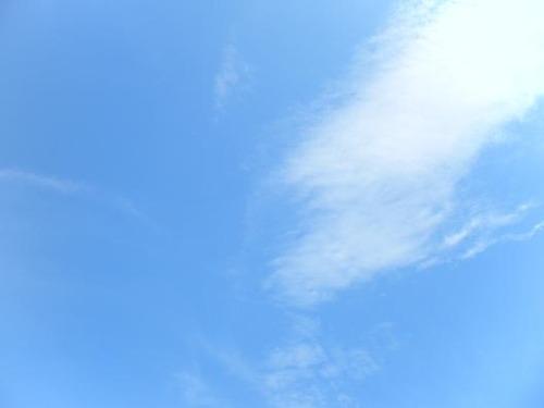 平成23年8月26日撮影 020