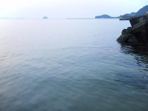 平成25年7月30日PM7:05撮影。 006