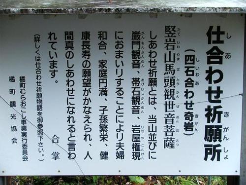 セッコク平成25年5月28日 009