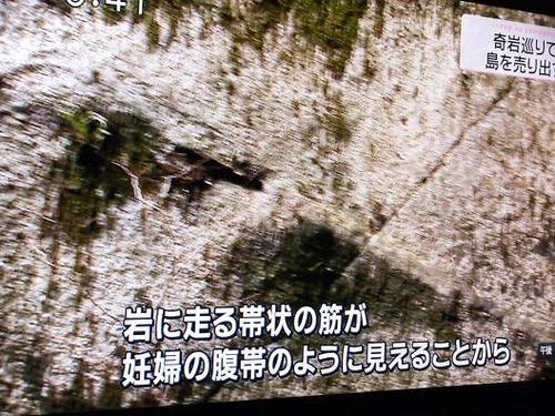 テレビ 023