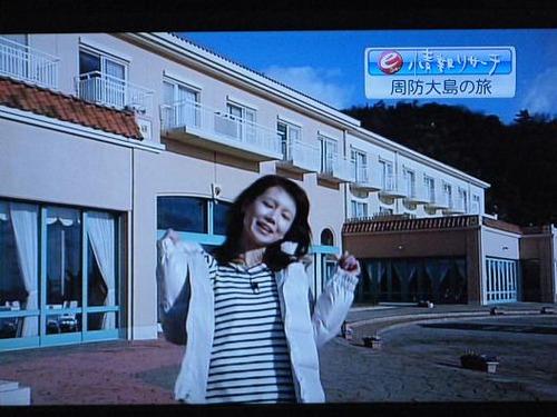 テレビ 028