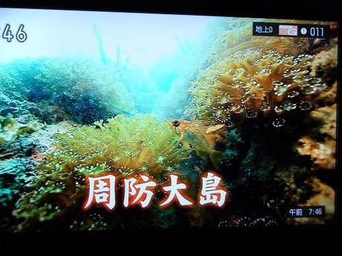 テレビ平成25年5月26日 025