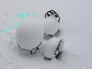 094yuki2.jpg
