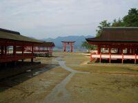 10-4-miyajima2.jpg