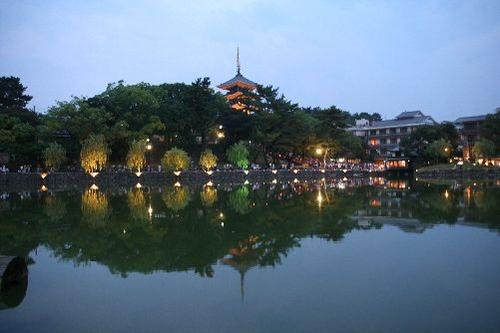 IMG_4002 灯火が猿沢の池を飾る