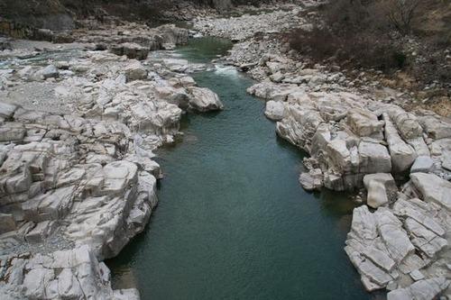 IMG_6820 木曽川はこのあたりは白一色。