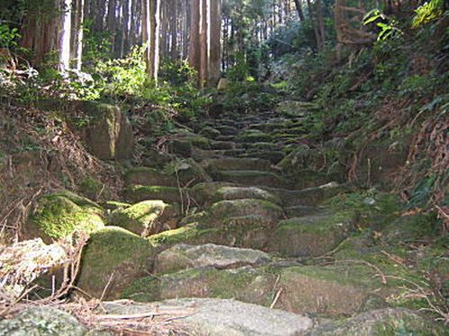 yagiyama10[1]